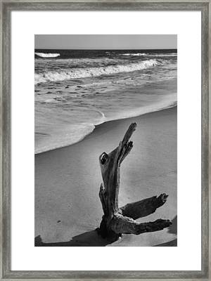 Snag And Surf Framed Print by Steven Ainsworth