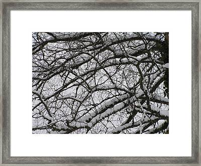 Snow Against A Grey Sky Framed Print