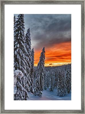 Snow And Sunrise Framed Print by Evgeni Dinev