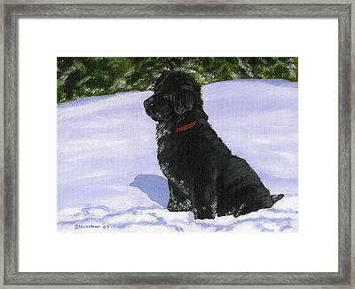 Snow Baby Framed Print