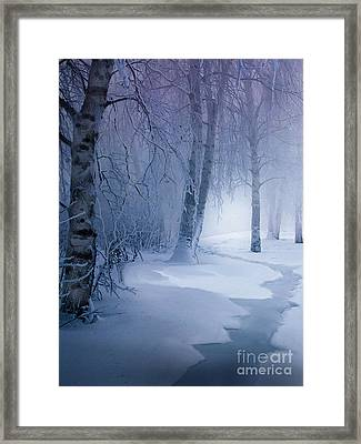 Snow Brook Framed Print by Robert Foster