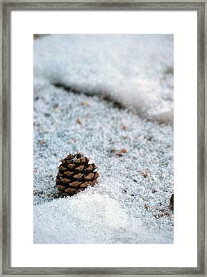 Snow Cone Framed Print