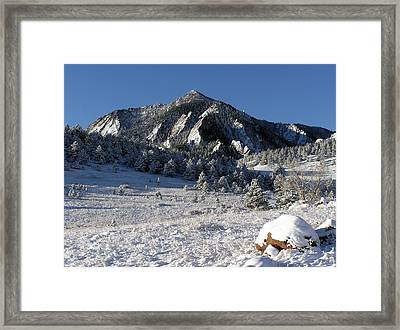 Snow Covered Bear Mountain Framed Print