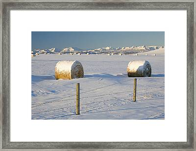Snow Covered Hay Bales In A Snow Framed Print by Michael Interisano