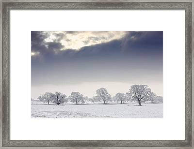 Snow Covered Trees And Field Framed Print by John Short