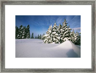 Snow Covered Trees In The Oregon Framed Print by Natural Selection Craig Tuttle