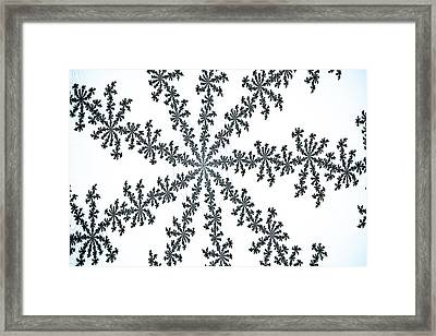 Snow Crystal Framed Print by David Pyatt