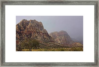 Framed Print featuring the photograph Snow Day In The Desert by Tammy Espino