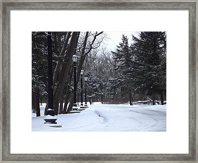 Snow Dr. Framed Print by Nicholas Baker