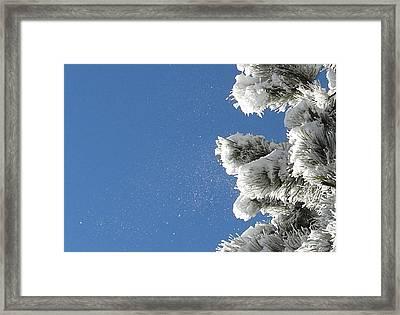 Snow Flakes Against A Blue Sky Framed Print