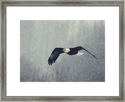 Framed Print featuring the photograph Snow Flight by Myrna Bradshaw