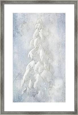 Snow Folly Framed Print