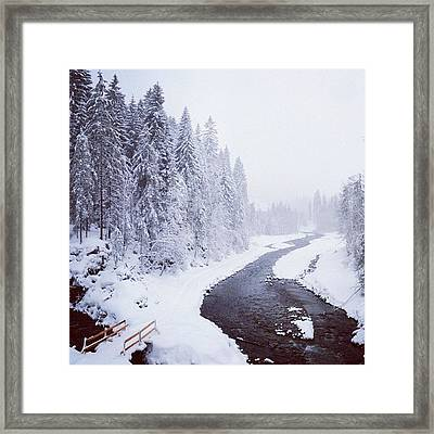 Snow Landscape - Trees And River Framed Print