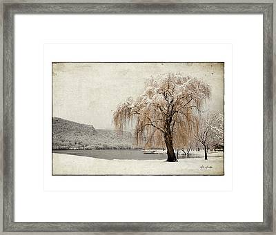 Snow Tree 1 Framed Print