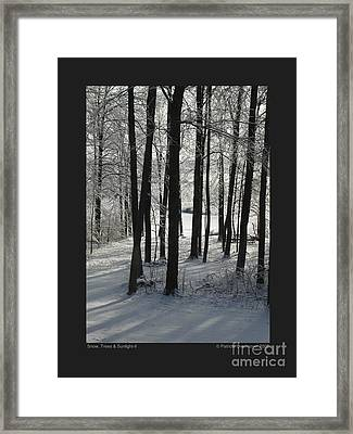 Framed Print featuring the photograph Snow Trees And Sunlight-ii by Patricia Overmoyer