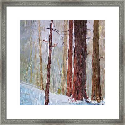 Snow Walker Framed Print
