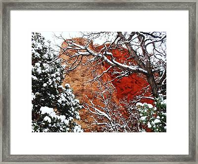 Framed Print featuring the photograph Snow White by Clarice  Lakota