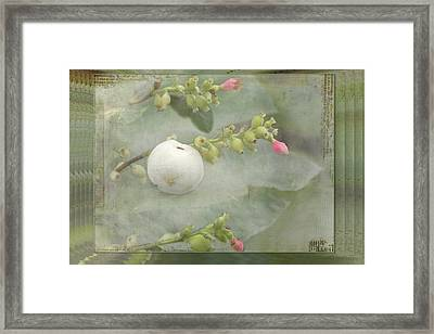 Snowberry Tales Framed Print by Steppeland -
