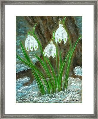 Snowdrops Framed Print by Anna Folkartanna Maciejewska-Dyba