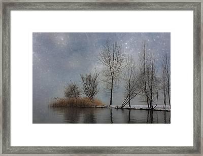 Snowfall Framed Print by Joana Kruse