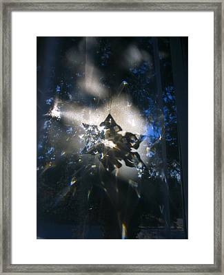 Snowflake Crystal Shadow Framed Print by Adam Long