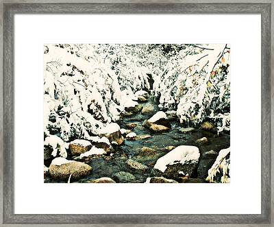 Snowy Creek Framed Print