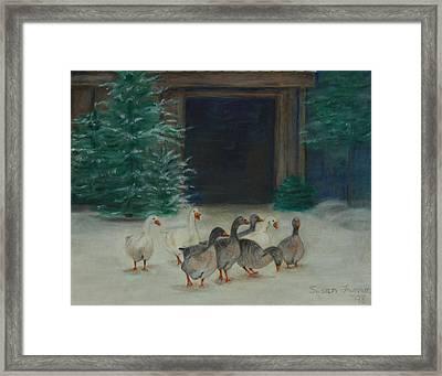 Snowy Geese Framed Print by Susan Fuglem
