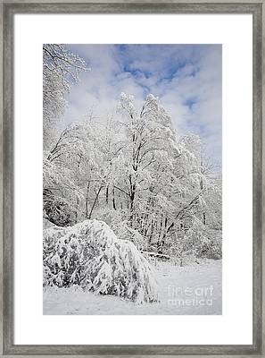 Snowy Landscape Framed Print by Len Rue Jr and Photo Researchers