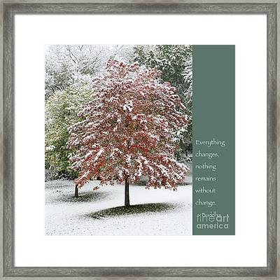 Snowy Maple With Buddha Quote Framed Print by Heidi Hermes