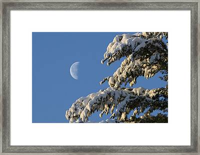 Snowy Moon Framed Print