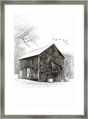 Snowy Morning Framed Print by Mary Timman