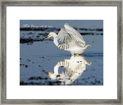 Snowy Morning Reflection Framed Print