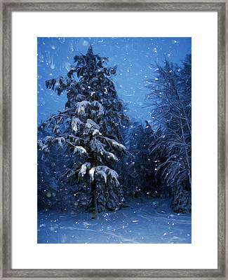 Snowy Night Sentinel Framed Print