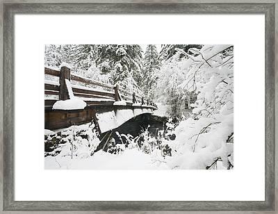 Snowy Pedestrian Bridge Through Forest Framed Print
