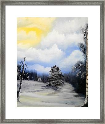 Snowy Sunshine Framed Print by Amity Traylor