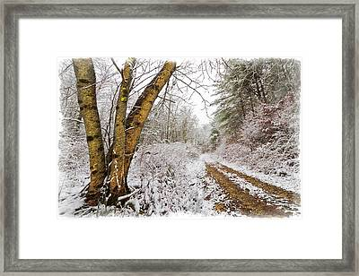 Snowy Watercolor Framed Print by Debra and Dave Vanderlaan