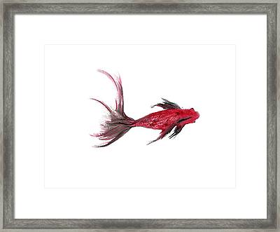 Framed Print featuring the painting So Little by Alethea McKee