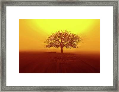 So Lonely Framed Print
