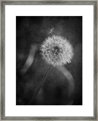So Many Promises You Couldn't Keep Framed Print by Laurie Search