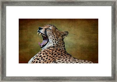 So Tired Framed Print by Heather Thorning