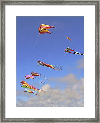 Soaring With The Clouds Framed Print by Pamela Patch