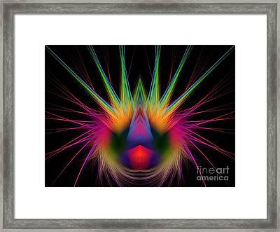 Soft And Stiff Framed Print by Klara Acel