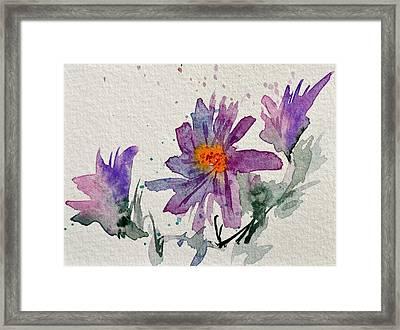 Soft Asters Framed Print by Beverley Harper Tinsley
