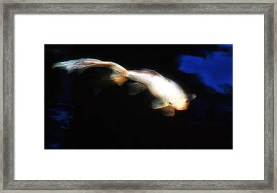 Soft Focus Comet Framed Print