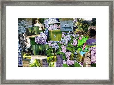 Soft Lavender Framed Print by Sherry  Kepp