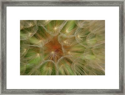 Soft Universe Framed Print