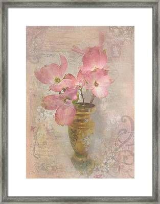 Softly Blooming Framed Print by Cindy Wright