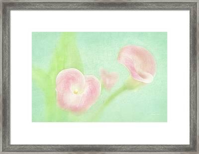 Softness Of Spring Framed Print