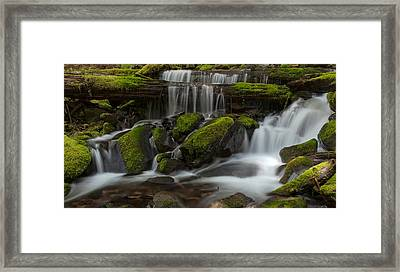 Sol Duc Stream Framed Print by Mike Reid
