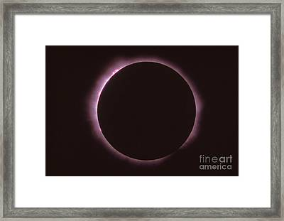 Solar Prominence And Chromosphere Framed Print by Science Source